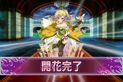161112アイリス(開花).jpg