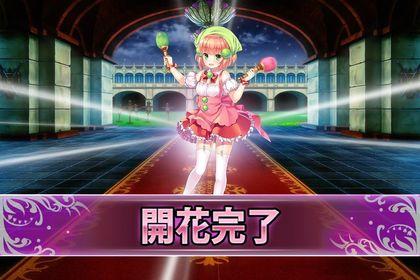 170509コキア(開花).jpg