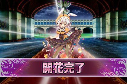 170606ウサギノオハロウィン(開花).jpg