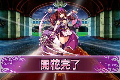 170606ダリア(開花).jpg