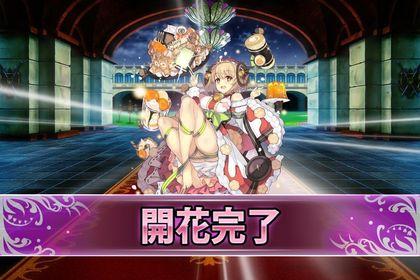 170619アプリコットXmas(開花).jpg