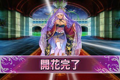170131フジバカマ(開花).jpg