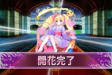181009ヘリオトロープ(浴衣)(開花).jpg